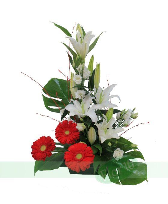 Flores, Rosas, Enviar centros de Flores, Flores Urgentes, Flores nacimiento, Flores para enamorados