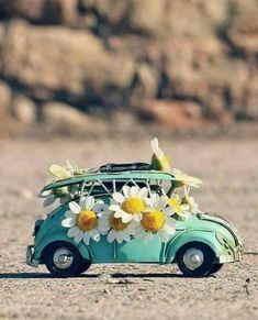 enviar flores para un nacimiento baratas, flores para nacimiento de niña, flores para nacimiento de niño, enviar flores al hospital, flores para mi madre, enviar flores el día de la madre a domicilio, flores urgentes a domicilio, flores urgentes baratas