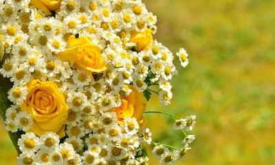 enviar flores urgentes para cumpleaños, Floristas Profesionales, floristería online, enviar flores urgentes para un nacimiento, enviar flores urgentes el día de la madre, enviar flores urgentes para una novia