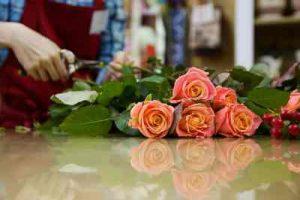 ramo de rosas blancas, enviar ramode rosas, 6 rosas rojas, enviar rosa, Rosas de San Valentín,, regalar rosas a domicilio, floristerías Madrid, floristería online, floristería Camelias