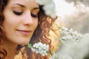 flores, enviar ramo de flores, ramos de flores a domicilio, ramos de flores urgentes, ramos de flores para regalar, mandar flores online, ramos de flores, flores para nacimientos, ramo flores rosas