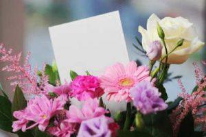 Rosas, Flores, Envio rosas, regalar rosas a domicilio, centro de rosas blancas, floristería Camelias, floristeria online, floristeria Madrid, floristeria