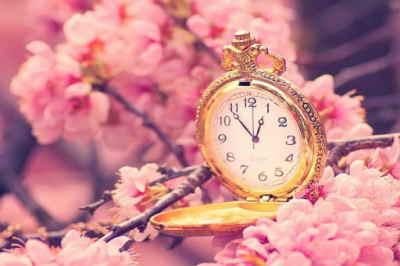 enviar flores urgentes en, mandar flores, flores, rosas, enviar rosas a mi madre, enviar ramo de flores día de la madre, regalar flores el dia de la madre, mandar flores a mi madre, enviar flores a mi amiga, flores para nacimiento, el mejor regalo, el regalo perfecto