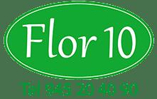 Plataforma Online Flor 10