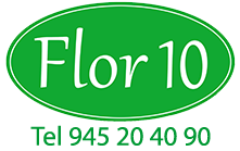 Regalar Flores, Flores para Regalo Flor 10